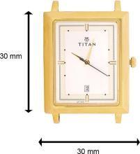 Titan 1715YM01 Analog Watch - For Men